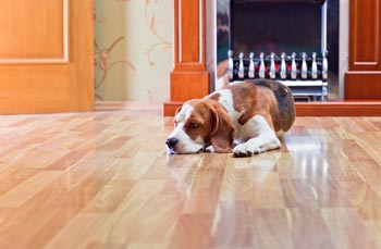 Hardwood Flooring in Grand Rapids MI